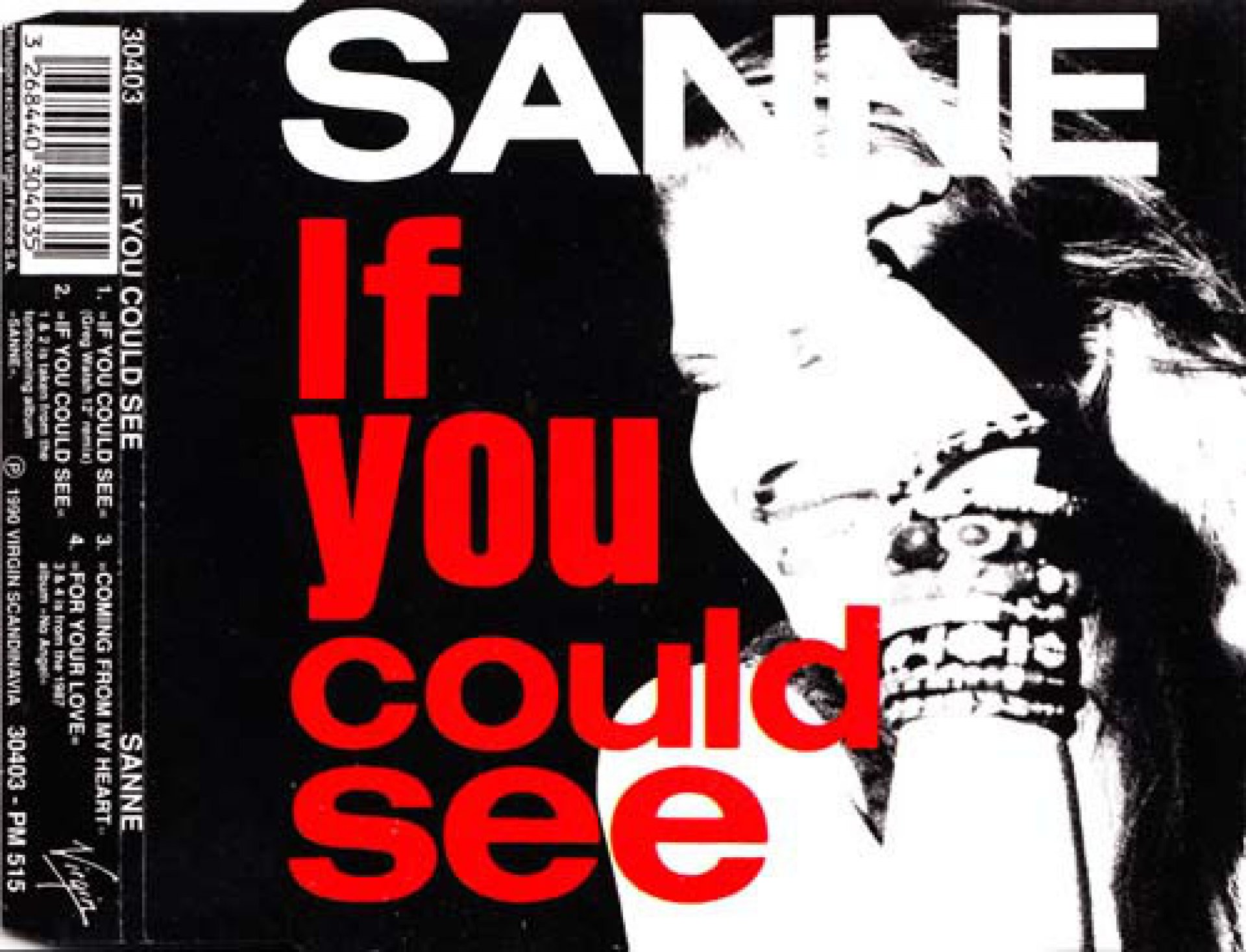 Sanne - If You Could See